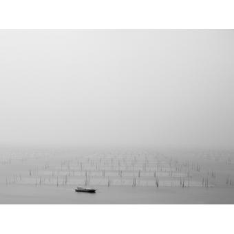 The Morning Mist 2